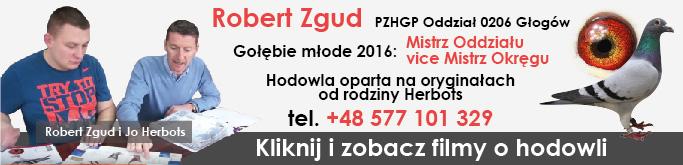 Robert Zgud - hodowca go��bi pocztowych, PZHGP Oddzia� 0206 G�og�w